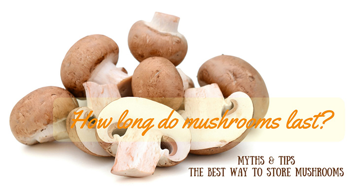How long do mushroom last?