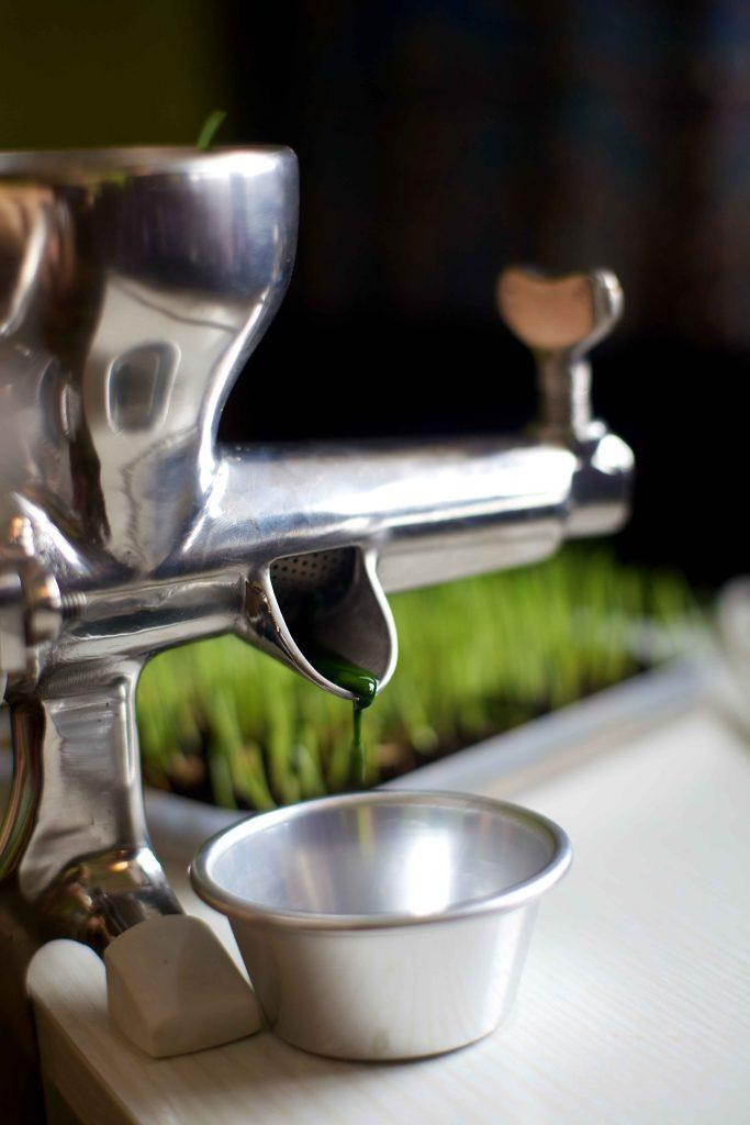 Electric  Wheatgrass Juicer
