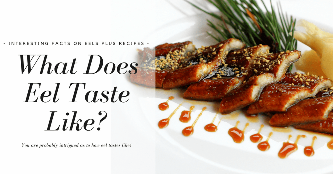 What Does Eel Taste Like – Interesting Facts on Eels Plus Recipes