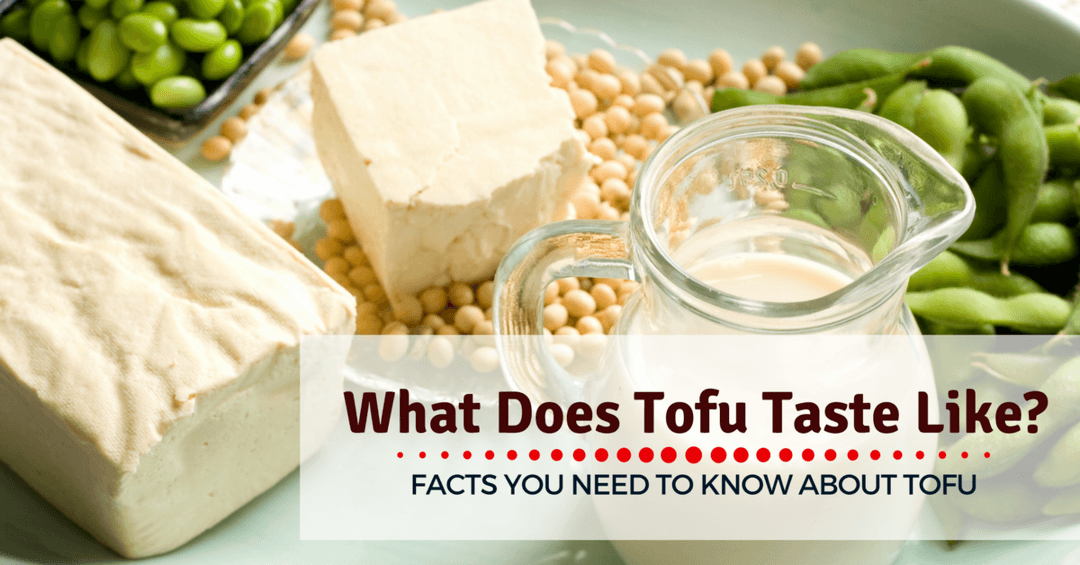 What does tofu taste like: Facts You Need To Know About Tofu