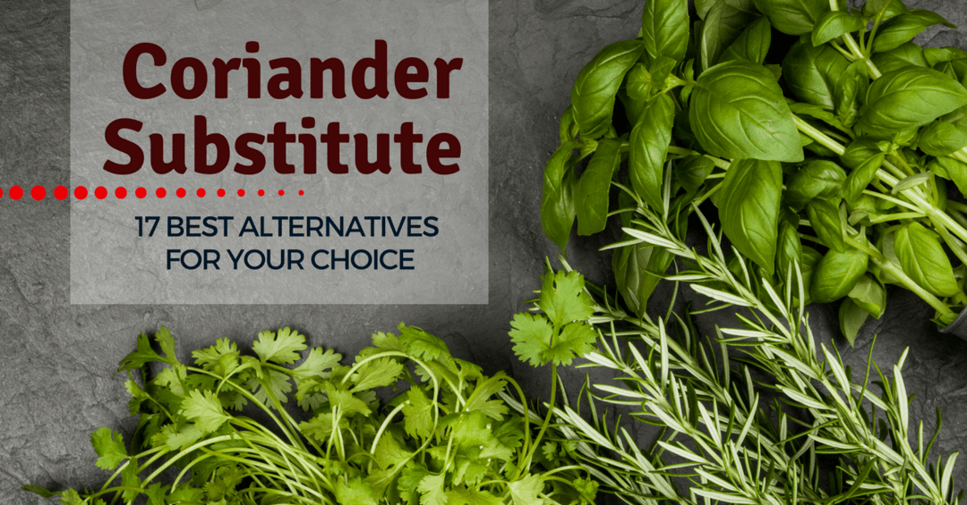 Coriander Substitute- 17 Best Alternatives For Your Choice